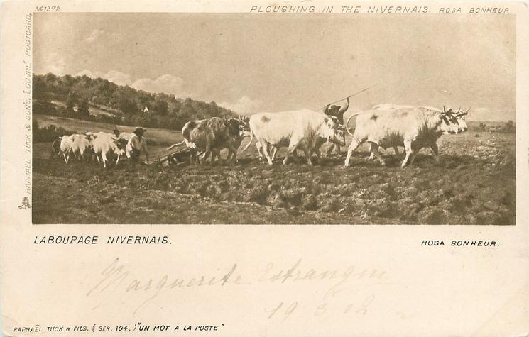 PLOUGHING IN THE NIVERNAIS, LABOURAGE NIVERNAIS