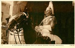 A LIFE GUARD ON DUTY AT HORSE GUARDS PARADE