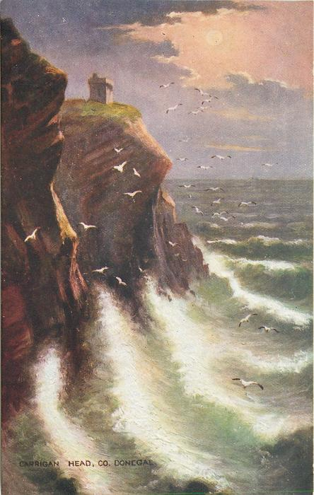 CARRIGAN HEAD, CO. DONEGAL