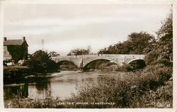 THE TEIF BRIDGE