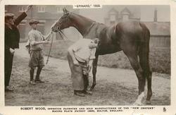 """EPINARD"" 1923, ROBERT WOOD shooing the horse"