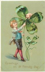 GREETINGS ON ST. PATRICK'S DAY  boy with exaggerated 4 leaved clovers, pig