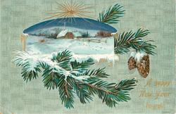 A HAPPY NEW YEAR TO YOU  inset of snowy rural scene upper left, fir branches & cones around