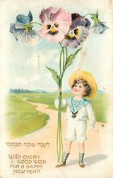 WITH EVERY GOOD WISH FOR A HAPPY NEW YEAR  boy stands on road holding & looking up at exaggerated pansies