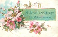 A BRIGHT AND HAPPY NEW YEAR TO YOU on green panel behind pink dog-roses