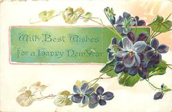 WITH BEST WISHES FOR A HAPPY NEW YEAR  on green panel behind violets
