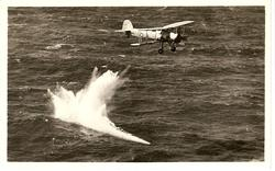 FAIREY SWORDFISH, SHOWN DROPPING A TORPEDO. A THREE SEATER BIPLANE//OR BOMBING