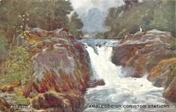 SKELWITH FORCE, LANGDALE. AMBLESIDE OR CONISTON STATIONS