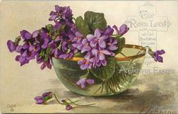violets in gold rimmed glass bowl
