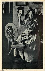 A MANX DAME SPINNING