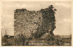 IVEAGH CASTLE, RATHFRILAND