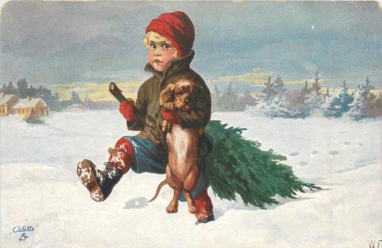 boy carries Xmas tree in snow, holding dachshund up on hind legs