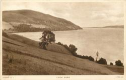 LOCH NESS from grassy hill