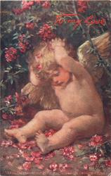 TO MY LOVE (in red) cherub with both hands behind head sits under rhododendron bush, many red flowers around