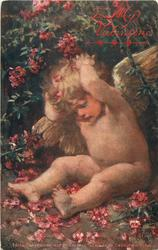 TO MY VALENTINE (in red, two lines, hearts below) cherub with both hands behind head sits under rhododendron bush, many red flowers around