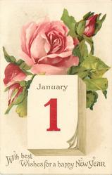 WITH BEST WISHES FOR A HAPPY NEW YEAR  pink rose open and two buds above calendar with JANUARY 1 image*