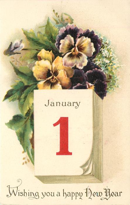 WISHING YOU A HAPPY NEW YEAR  pansies above calendar JANUARY 1  image####