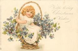 WITH LOVING BIRTHDAY/CHRISTMAS WISHES  girl sitting in basket with violets