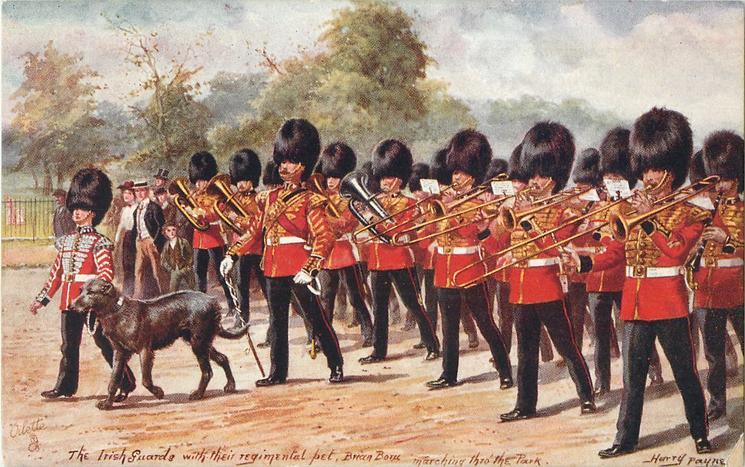 THE IRISH GUARDS WITH THEIR REGIMENTAL PET BRIAN BORU MARCHING THRO' THE PARK