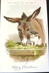 TO WISH YOU A HAPPY CHRISTMAS donkey at manger left, kitten right