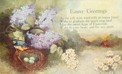 EASTER GREETINGS  lilac left above birds nest, rural scene