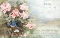 EASTER GREETING  bird on edge of nest, eggs, in roses