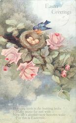 EASTER GREETINGS  bird on edge of nest in roses