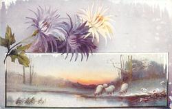 snow scene, sheep, chrysanthemums above