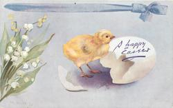 A HAPPY EASTER (in blue or green)  new born chick with cracked shell, lilies-of-the-valley left
