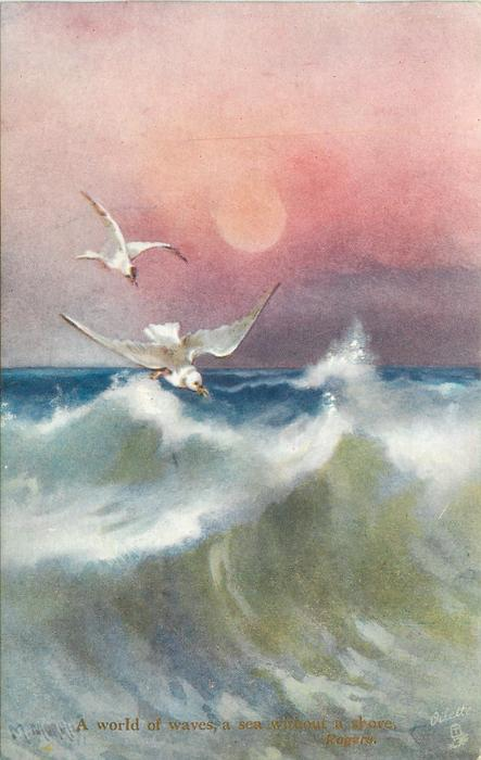 A WORLD OF WAVES, A SEA WITHOUT A SHORE  evening seascape, two birds, no rocks