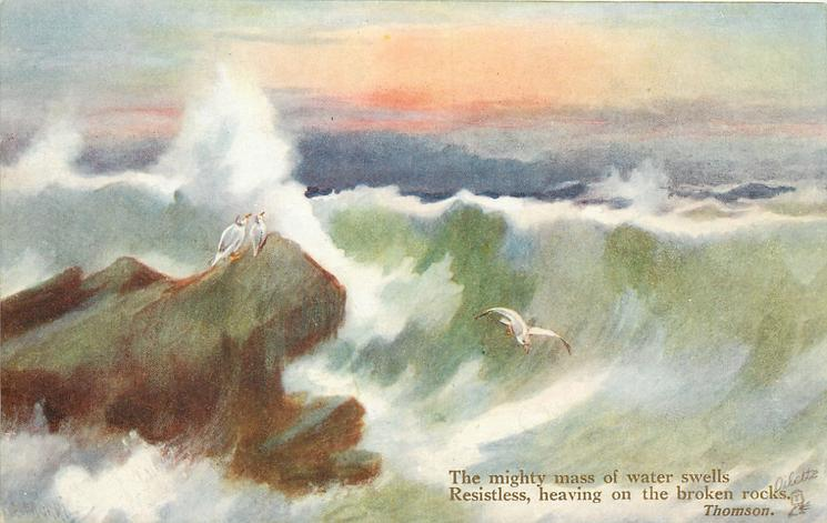 THE MIGHTY MASS OF WATER SWELLS RESISTLESS, HEAVING ON THE BROKEN ROCKS  evening seascape, two birds on rock, another flying, enormous breaker across the card