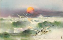 THE SUN KISSED WAVES DASHING THEIR SPRAY DANCING ANS LEAPING O'ER THE RESTLESS OCEAN