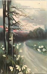 SAFE GREEN PASTURES, GAY WITH INNOCENT FLOWERS  winter trees left of road, snowdrops