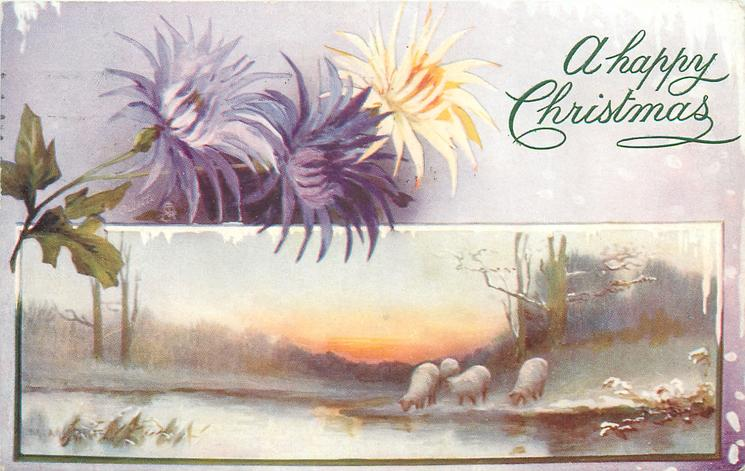 A HAPPY CHRISTMAS or CHRISTMAS GREETINGS or WITH BEST CHRISTMAS WISHES  four sheep grazing at pond in lower insert, three flower blooms to left above insert