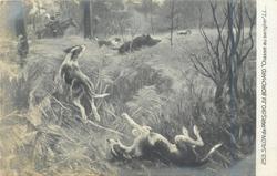CHASSE AU SANGLIER
