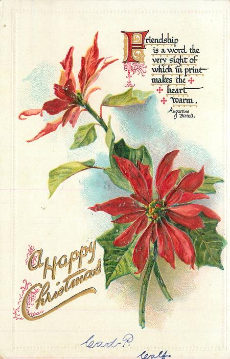 A HAPPY CHRISTMAS two flowers, stems crossed lower right