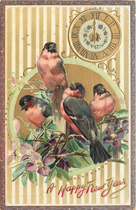 four red breasted finches on purple clematis, below clock