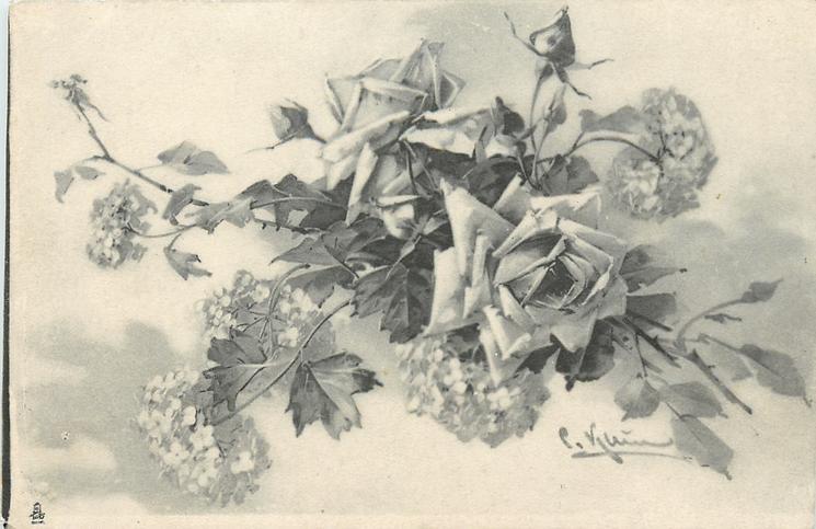 roses & hydrangea