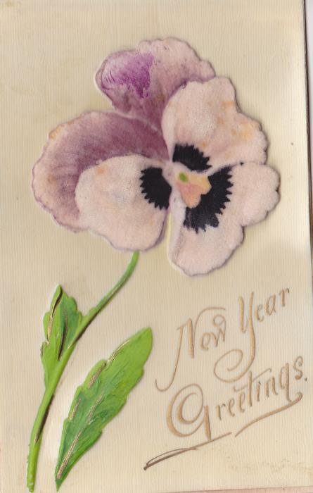 NEW YEAR GREETINGS single pansy