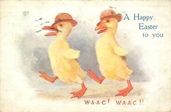 A HAPPY EASTER TO YOU, W.A.A.C! W.A.A.C!!  two ducklings march left