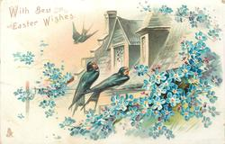 WITH BEST EASTER WISHES  two swallows on roof, blue forget-me-nots