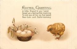 EASTER GREETING   chick, basket of eggs, catkins