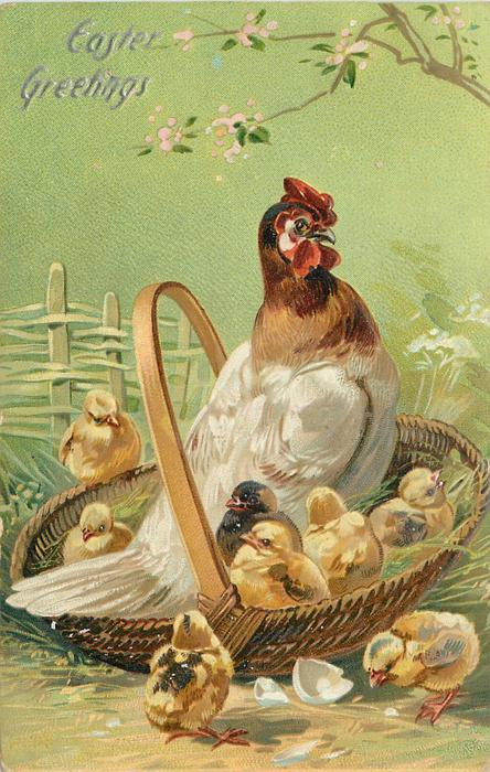EASTER GREETINGS  hen sits in basket with five chicks, one chick on edge of basket, two in front