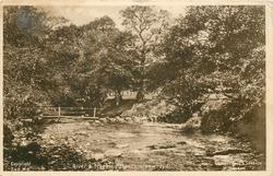 RIVER & STEPPING STONES, LLANWRTYD