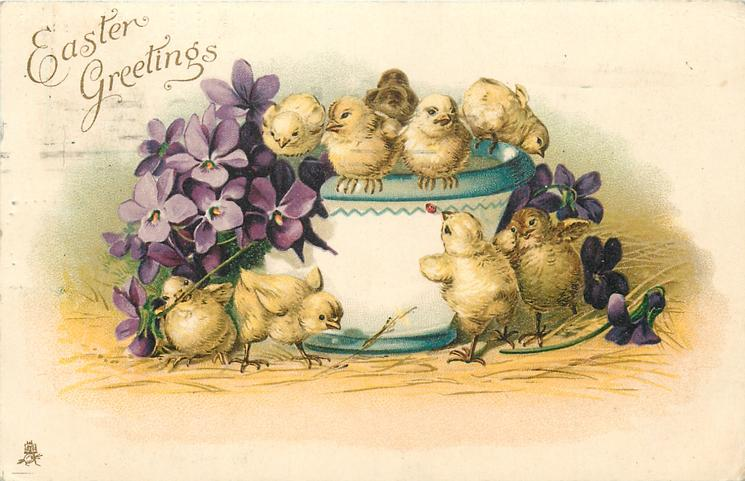 EASTER GREETINGS  five chicks on top of bowl, four on ground, violets left & four flowers right