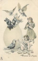 two girls & seven pigeons, huge egg