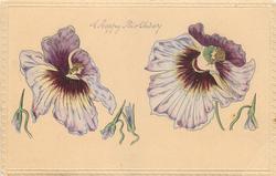 two fairies in purple pansies