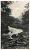 THE RIVER WYE & FALLS, MONSAL DALE