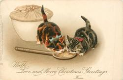 WITH LOVE AND MERRY CHRISTMAS GREETINGS, FROM  two kittens lick spoon