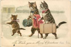 TO WISH YOU A MERRY CHRISTMAS  two personized cats & a kitten walk to station carrying luggage